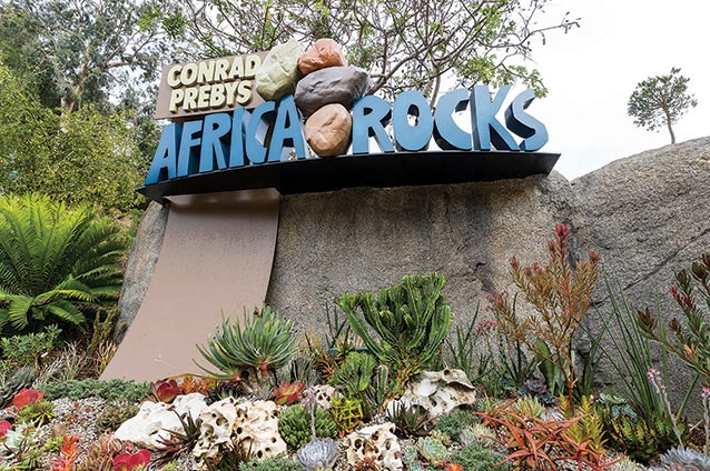 Entrance to Africa Rocks courtesy Ken Bohn San Diego Zoo