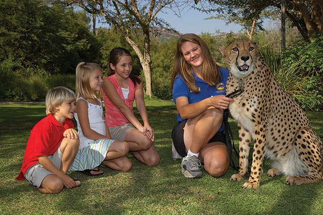 Kids and Trainer with Cheetah Courtesy SDZ Safari Park