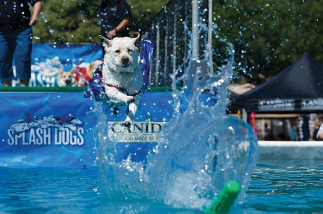 The West Coast's  Pet Expo Returns to Orange County