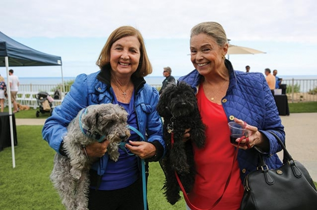 Yappy Hour Returns  for Tail Wagging Fun  at The Ritz-Carlton, Laguna Niguel