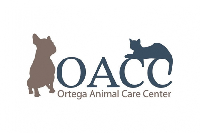Creature Comforts in South Orange County. Creating a Safe Space  for Your Furry Friends  at Ortega Animal  Care Center